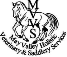 mvvs-logo_1